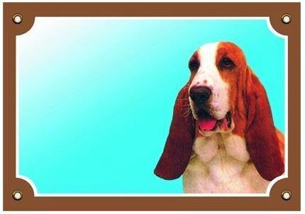 Farebná ceduľka Pozor pes Baset