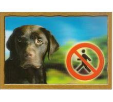 Ceduľka 3D Pozor pes Labradorský retríver (hnedý)