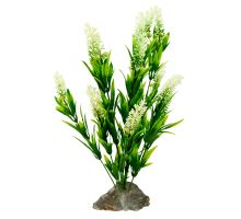 Lucky Reptile Borneo Grass, bílé květy cca 40 cm