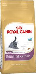 Royal Canin BREED Kitten Br. Shorthair