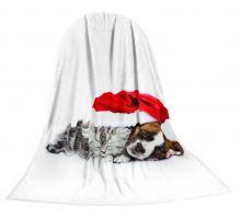 Deka TEXSTAR mikrovlákno 280g 150 x 200 cm - mačiatko a šteňa Vianoce