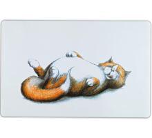 Prestieranie s ležiace hrubou mačkou 44 x 28 cm