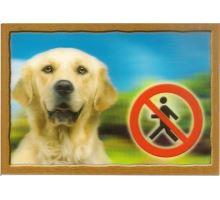 Ceduľka 3D Pozor pes Zlatý retriever  VÝPREDAJ