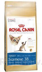 Royal canin Breed Feline Siamese