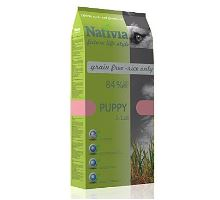 Nativite Dog Puppy