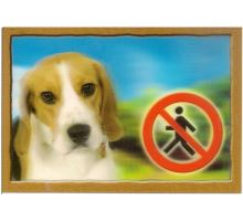 Ceduľka 3D Pozor pes Beagle