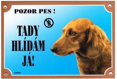 Farebná ceduľka Pozor pes Jazvečík dlhosrstý