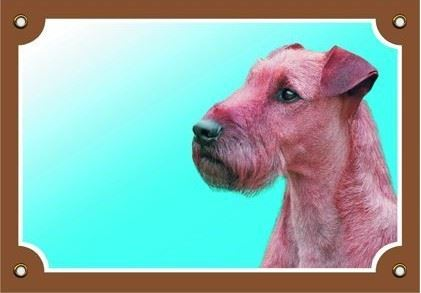 Farebná ceduľka Pozor pes Írsky teriér