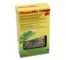 Lucky Reptile Flower Mix - zmes kvetov