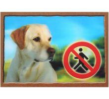Ceduľka 3D Pozor pes Labradorský retríver (béžový) VÝPREDAJ