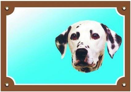 Farebná ceduľka Pozor pes Dalmatín