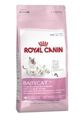 Royal Canin Growth Baby Cat