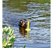 Mot-Aqua aportovacia kolík do vody, plávajúce 29 cm