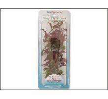Rastlina Red Ludwigia 23 cm 1ks