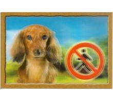 Ceduľka 3D Pozor pes Jazvečík dlhosrstý