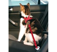 Postroj do auta pre mačku 20-50cm