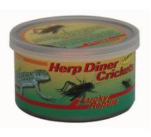 Lucky Reptile Herp Diner cvrčci 35g - velcí