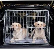 Klietka do auta pre 2 psov kovová 93x68x79cm skosená TRIXIE