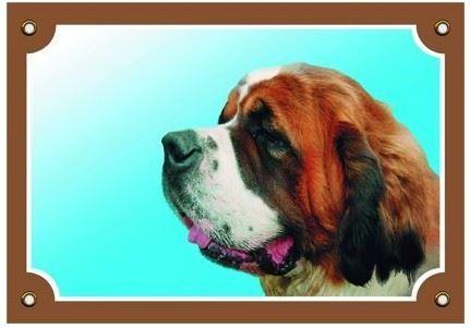 Farebná ceduľka Pozor pes Bernardín
