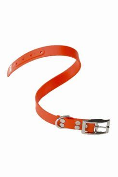 Obojok gumový Ergoflex CF oranžový