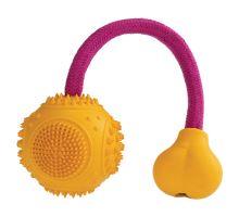 Dentálne mätový loptička s ružovým lanom HipHop