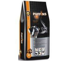 Puffins Adult