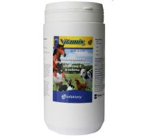 Vitamix SE plv