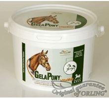 Gelapony VITAMINO 10,8 kg