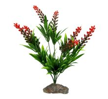 Lucky Reptile Borneo Grass, červený květ cca 30 cm