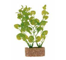 Plastové rastliny s podkladovým pieskom 12 cm