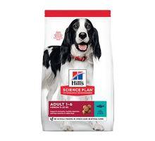 Hill 'Can.Dry SP Adult Medium Tuna & Rice 12kg