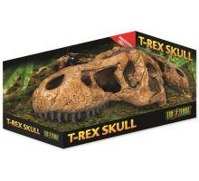 Dekorácie EXO TERRA T-Rex lebka 1ks