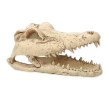 Dekorácie reptať PLANET Krokodília lebka 13,8 cm 1ks