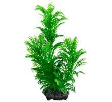 Rastlina TETRA Green Cabomba S