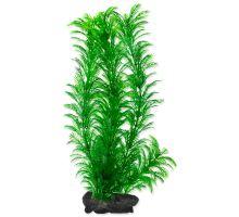 Rastlina TETRA Green Cabomba L
