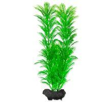 Rastlina TETRA Green Cabomba M